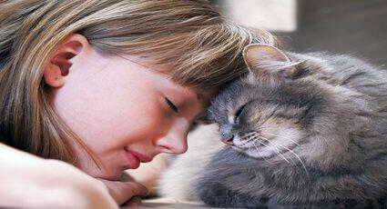 Sfaturi pentru o relatie armonioasa cu pisica